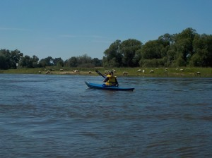 Natur beiderseits am Ufer